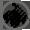veterinary-icon
